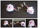 Baile de rosas