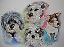 Retrato perros family