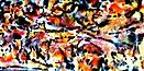 FRACTALES 6
