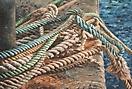 Cuerdas en norai