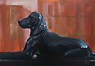 Los perros de Santa Ana III.